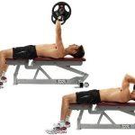exercice triceps banc de musculation